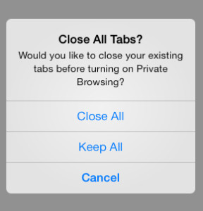 Private Browsing iOS 7